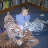 Library Tigers