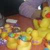 duckies1